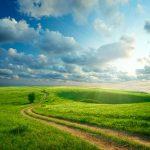 nature, respect de l'environnement